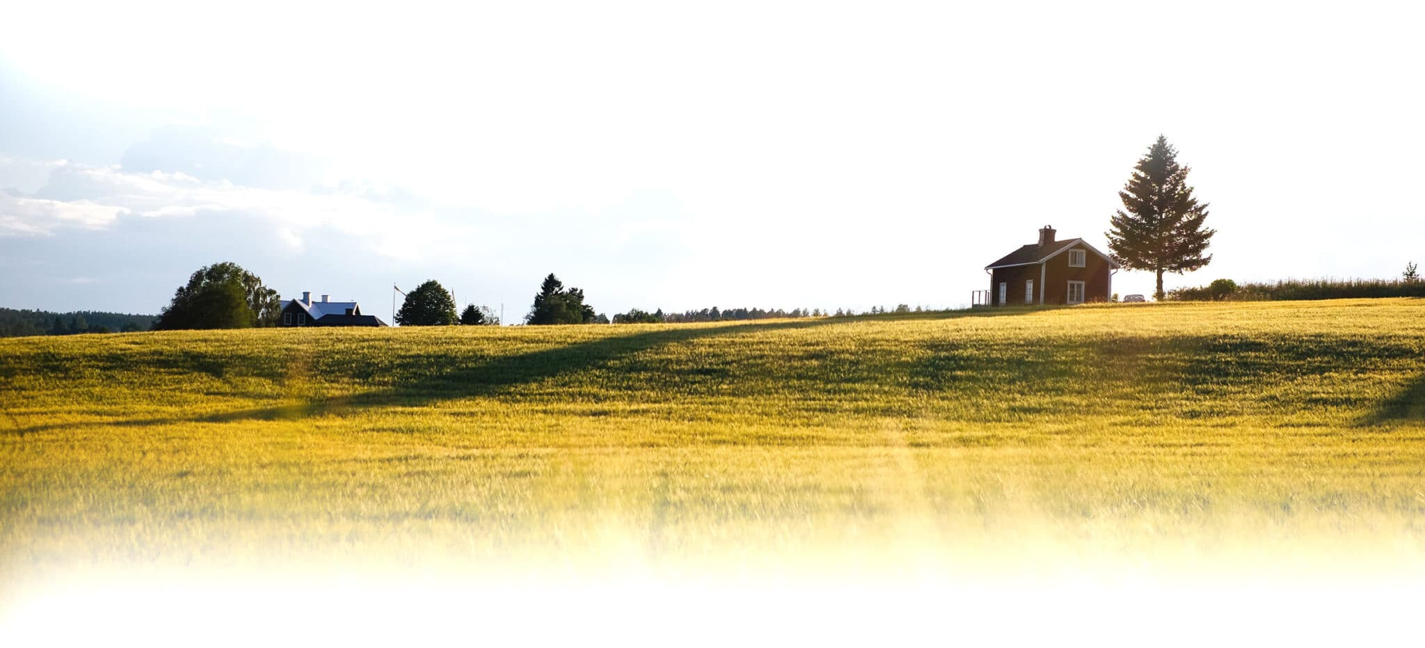 Rolling country-side hills